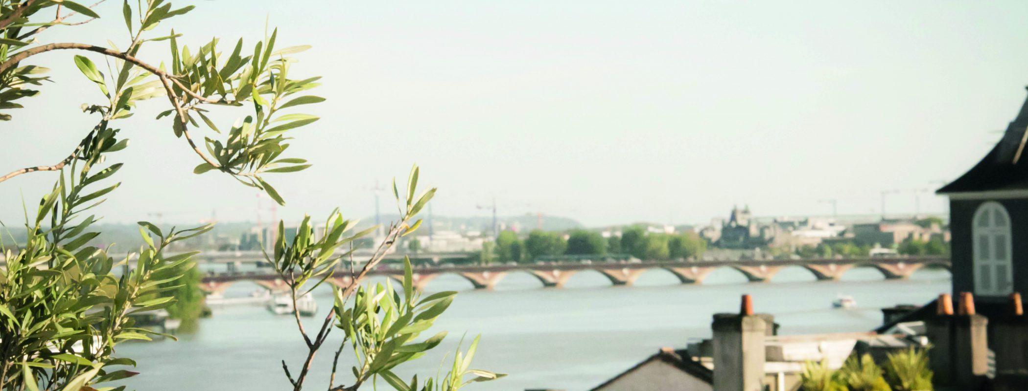 Vente de Bordeaux